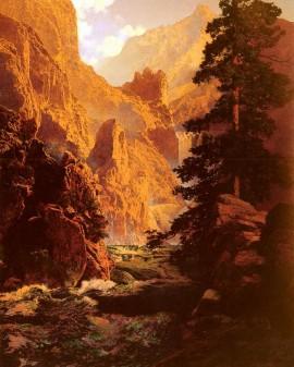 Pine canyon